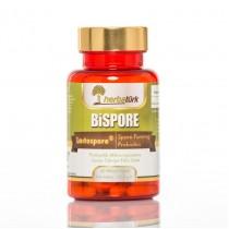 Herbatürk Bispore