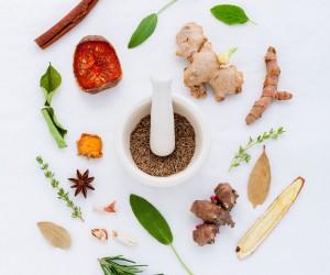 Bitkisel Besin Destek Ürünleri